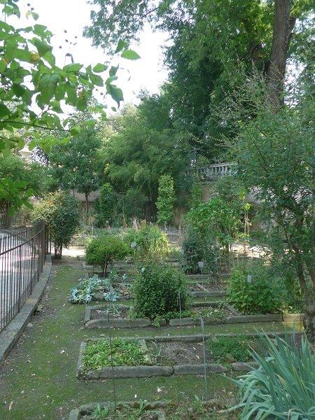 Botanischer Garten Italien Gardasee: Botanischer Garten Padua, Italien
